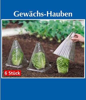 Baldur-Garten Gewächshaus-Hauben 6er-Set,1 Set