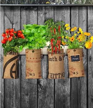 Baza Seeds Mini-Garten Aufhängeleiste,1 Stück