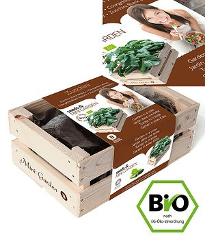 "Baza Seeds Mini-Garten BIO-Zucchini ""Black Beauty"",1 Kiste"