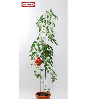 bellissa Tomatensäule 120 cm, 1 Stück