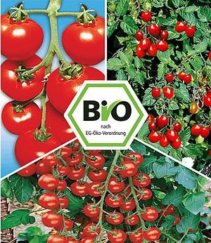 "BIO-Tomaten-Kollektion,6 Pfl.,""Previa F1"" & BIO-Tomaten ""Pepe F1"""