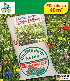 Captain Green Wildblumen-Rasen,1 kg