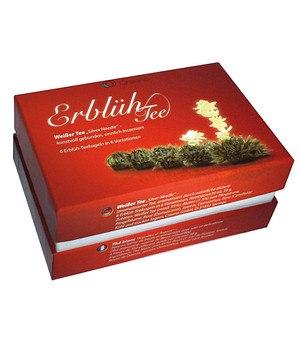 Creano Erblüh-Tee Nachfüll-Dose,6 Kugeln