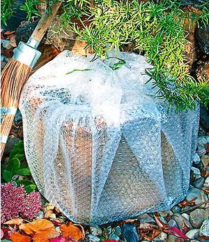 Siena garden bio schneckenfalle2 st ck g nstig online for Deko gartenartikel