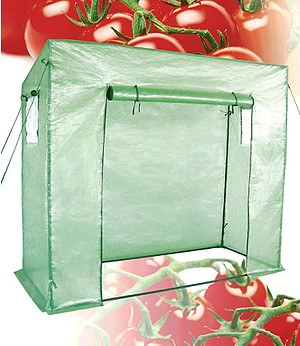 Dinies Deko & Gartenartikel Tomaten-Gewächshaus 169/148x200x77 cm,1 Komplett-Set