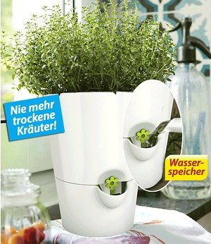 Emsa EMSA Kräutertopf Fresh Herbs Weiß,1 Topf