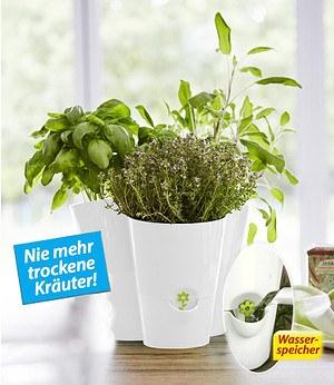 Emsa EMSA Trio Kräutertopf Fresh Herbs Weiß,1 Stück