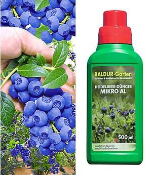 "Heidelbeere ""Reka® Blue"" & Dünger ""Micro AL"",1 Set"