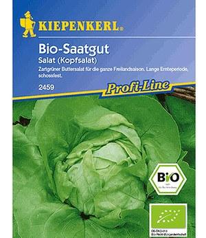 Kiepenkerl BIO-Kopfsalat,1 Portion