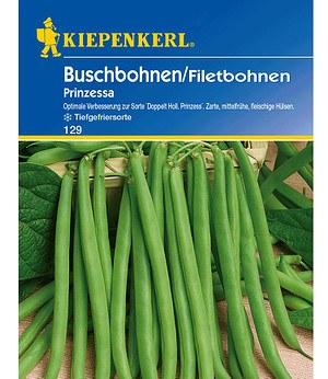 Kiepenkerl Buschbohnen 'Prinzessa',1 Portion