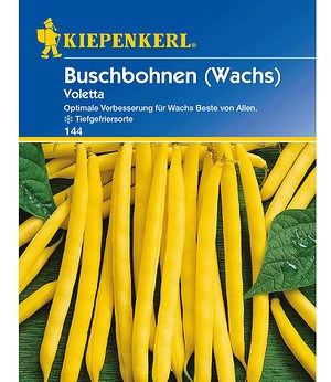 """Kiepenkerl Buschbohnen """"Voletta"""",1 Portion"""