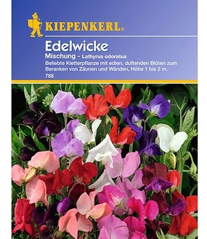 Kiepenkerl Edelwicke Mischung,1 Portion