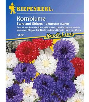 "Kiepenkerl Kornblume ""Stars and Stripes"",1 Portion"