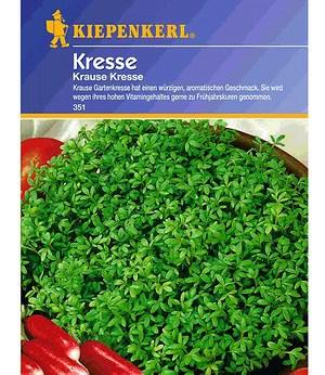 "Kiepenkerl Kresse ""gekraust"",1 Portion"