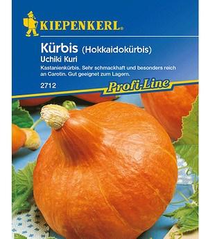 "Kiepenkerl Kürbis ""Uchiki Kuri"",1 Portion"