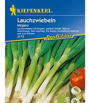 "Kiepenkerl Lauchzwiebeln ""Negaro"",1 Portion"