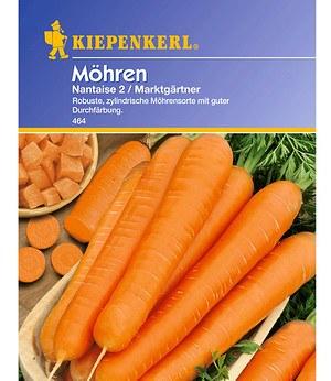 Kiepenkerl Möhren 'Nantaise 2 Marktgärtner',1 Portion