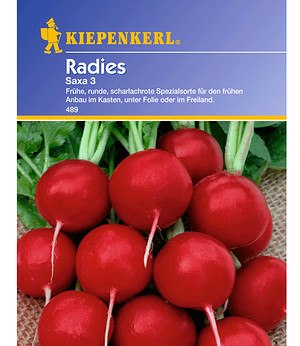 Kiepenkerl Radies 'Saxa 3',1 Portion