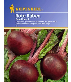 Kiepenkerl Rote Rüben 'Rote Kugel 2',1 Portion