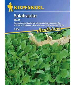 Kiepenkerl Rucola/Salatrauke,1 Portion