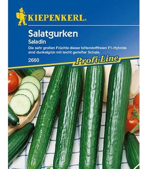 """Kiepenkerl Salatgurken """"Saladin"""",1 Portion"""