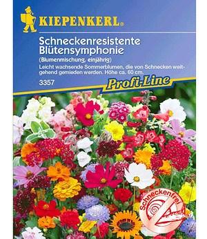 Kiepenkerl Schneckenresistente Blütensymphonie,1 Portion