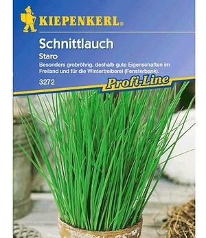 """Kiepenkerl Schnittlauch für Topf """"Staro"""",1 Portion"""