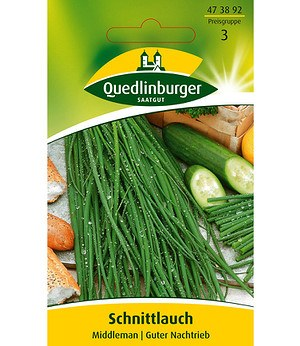 "Kiepenkerl Schnittlauch ""Middleman"", mehrjährig,1 Portion"