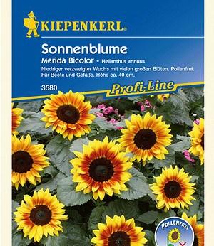 """Kiepenkerl Sonnenblume """"Merida Bicolor"""",1 Portion"""