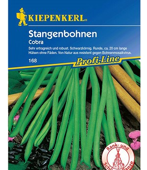 """Kiepenkerl Stangenbohnen """"Cobra"""",1 Portion"""