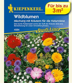 Kiepenkerl Wildblumen und Kräuter Mix,1 Portion