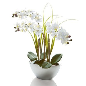 Kunstpflanze Orchidee White Swing