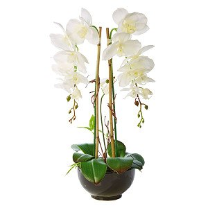 Kunstpflanze Orchideentopf Grace