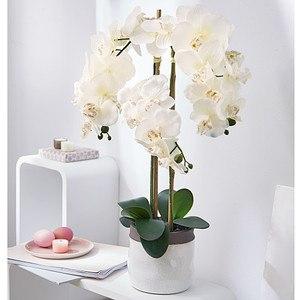 Kunstpflanze Orchideentopf Harmonie