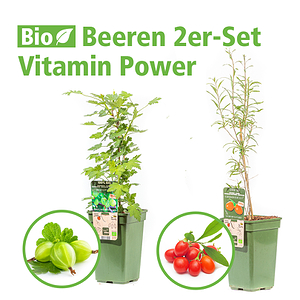 Mein schöner Garten Beeren 2er-Set 'Vitamin Power'