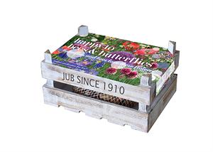 Mein schöner Garten Tulpen Box 'Happy to Bees & Butterflies'