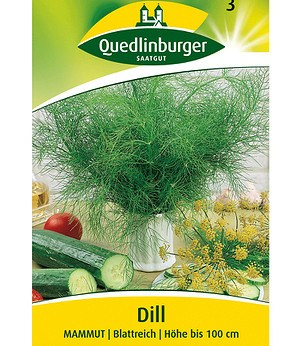 Quedlinburger Gurken-Dill, blattreich,1 Portion