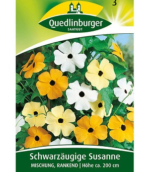 Quedlinburger Schwarzäugige Susanne,1 Portion