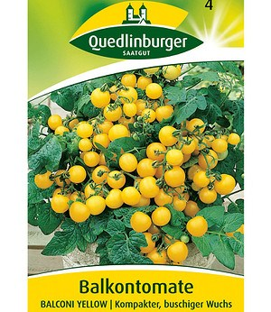 "Quedlinburger Tomate ""Balconi Yellow"",1 Portion"