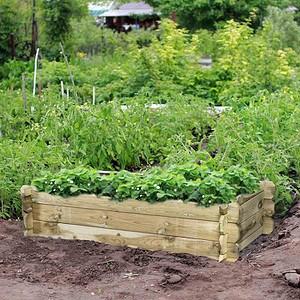 siena garden hochbeet tom rechteckig 120x60x30cm g nstig. Black Bedroom Furniture Sets. Home Design Ideas