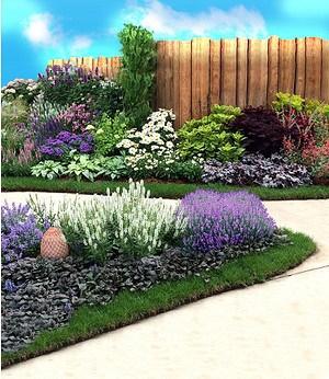 """Staudenbeet """"Blau-weißer Garten"""",8 Pflanzen"""