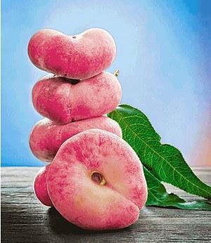 "Teller-Pfirsich ""PlatiforTWO®"",1 Pflanze"