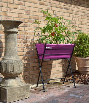 Vegtrug VEGTRUG Hochbeet Pink 65x40x79,1 Stück