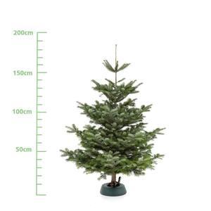 Weihnachtsbaum XL (ca. 175 cm)