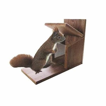 AP.HOSS Futterstation Eichhörnchen, Massivholz