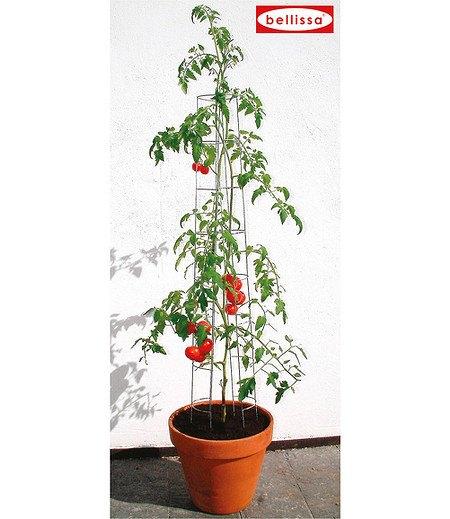 bellissa Tomatenturm 120 cm,1 Stück