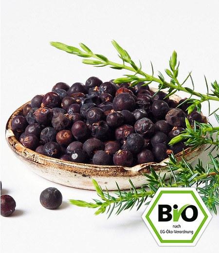 BIO-Grill-Wacholder 1 PflanzeJuniperus communis Meyer
