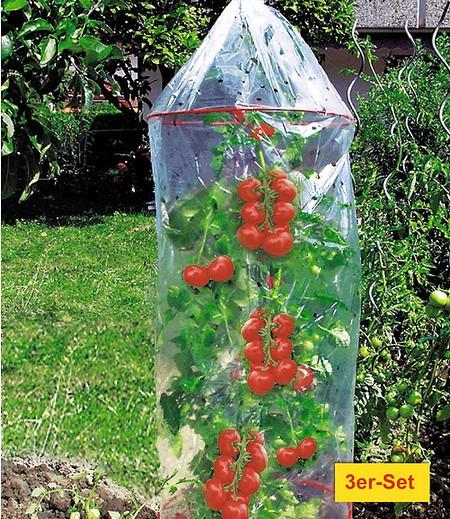 Dinies Deko & Gartenartikel Tomaten-Reifehaube 3er-Set,1 Pack.
