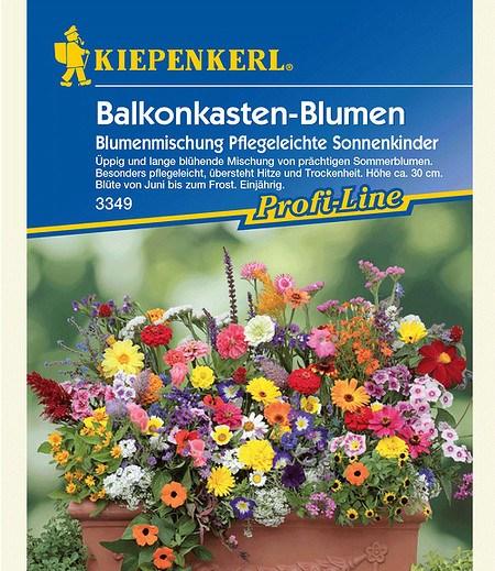 """Kiepenkerl Balkonkasten-Blumenmix """"Pflegeleichte Sonnenkinder"""",1 Portion"""