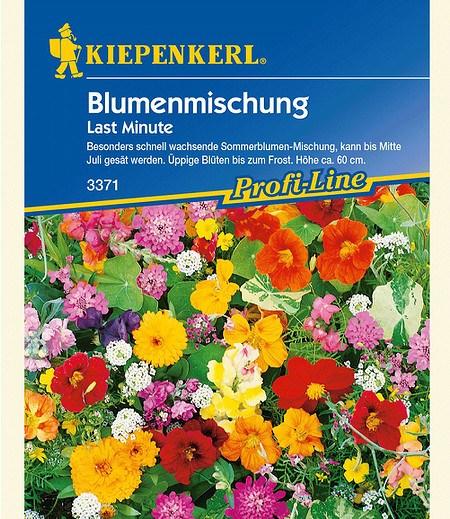"Kiepenkerl Blumenmischung ""Last Minute"",1 Portion"
